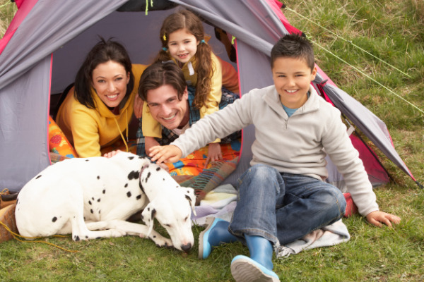 Best Tent for Camping with Dogs